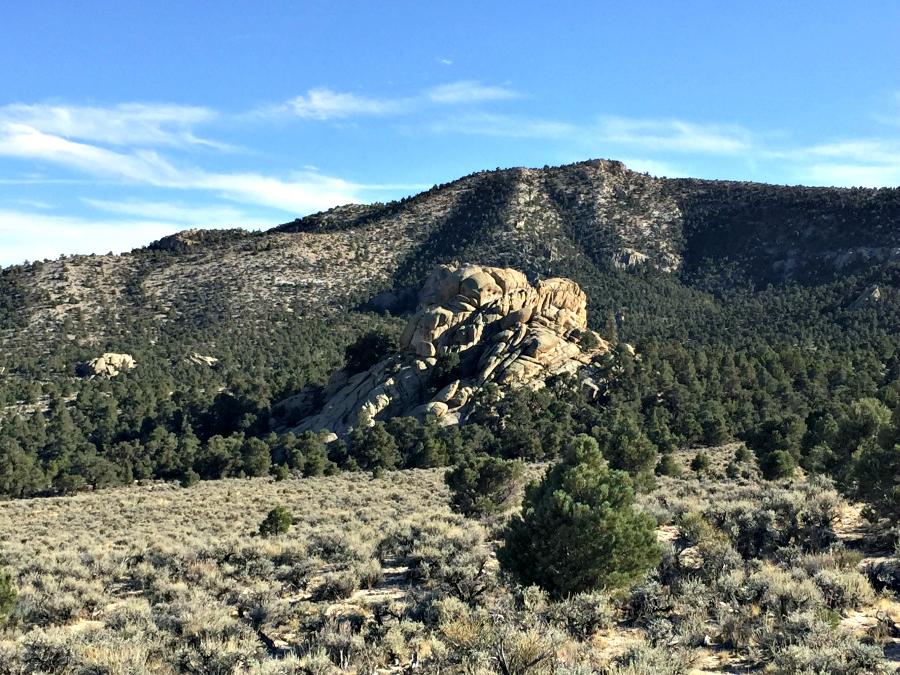 Nevada Elk Hunting: Lucky Number 13 | Harvesting Nature